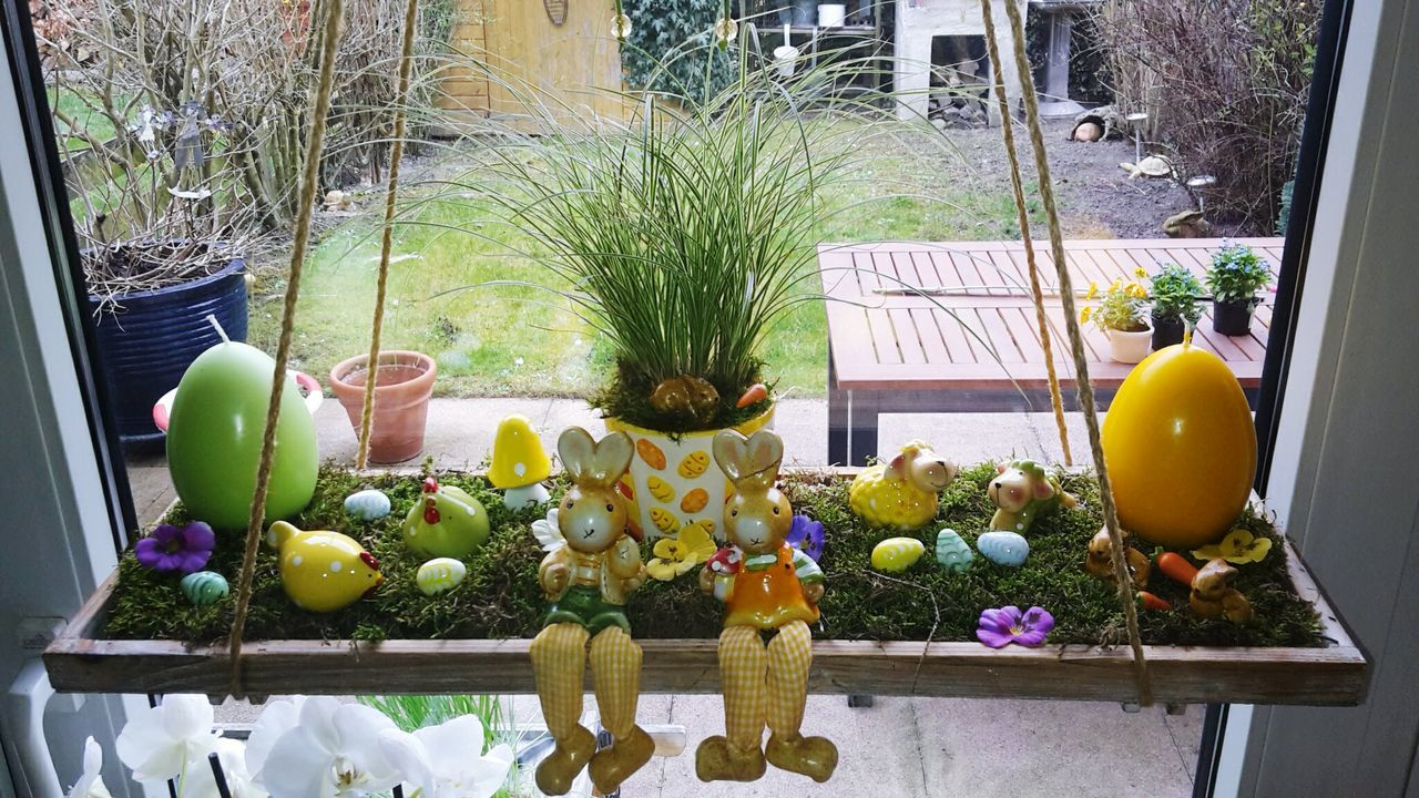 potted plant, fruit, no people, day, plant, flower, window, healthy eating, easter, outdoors, freshness, food, tree