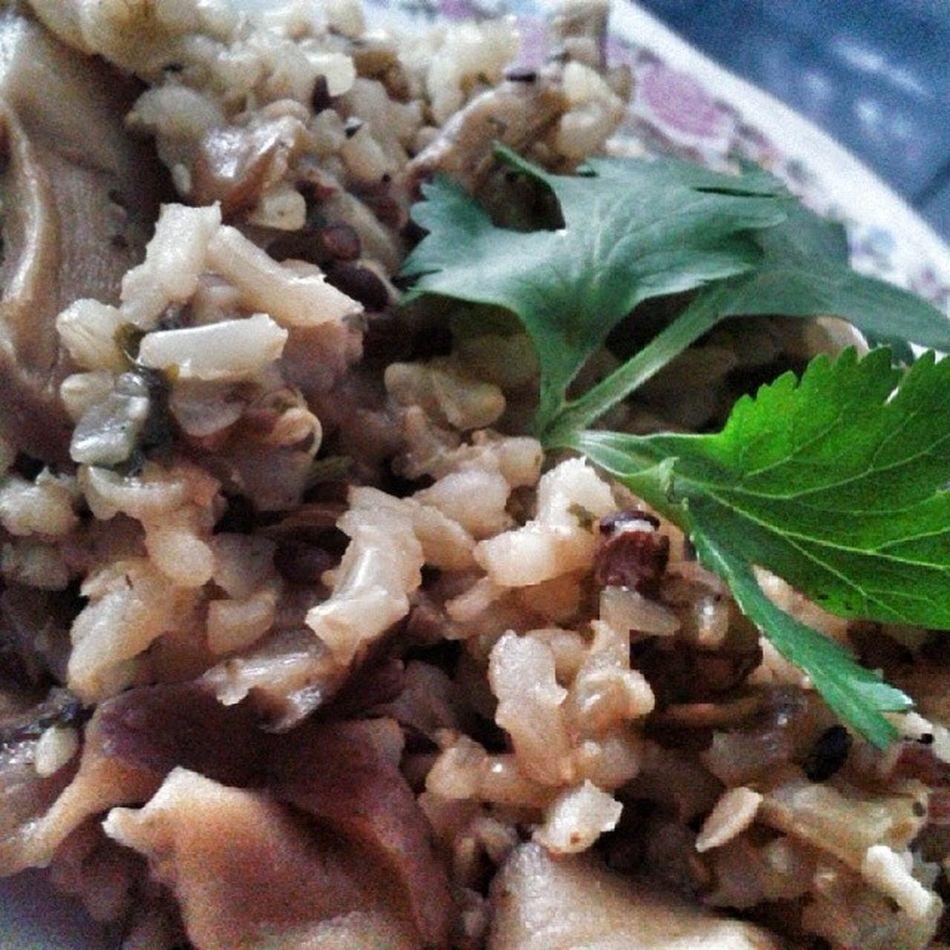 Risoto de shitake. Hjtoinspirada Gratitude Alimentacaoviva Vegano vegetariano yogainspiration vidasaudavel diaabencoado vemcomelas