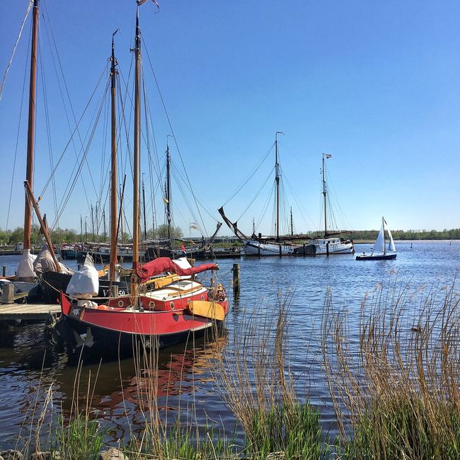 Groningen Lauwersmeer Harbour Harbour View Water Boats Boat Sailing Sailboat Sailing Ship