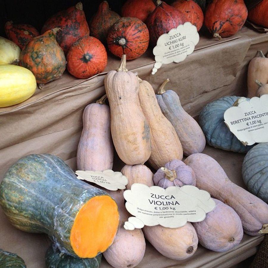 Pumpkins at autumn food fair in northern Italy (la festa della patata a Lazzate)