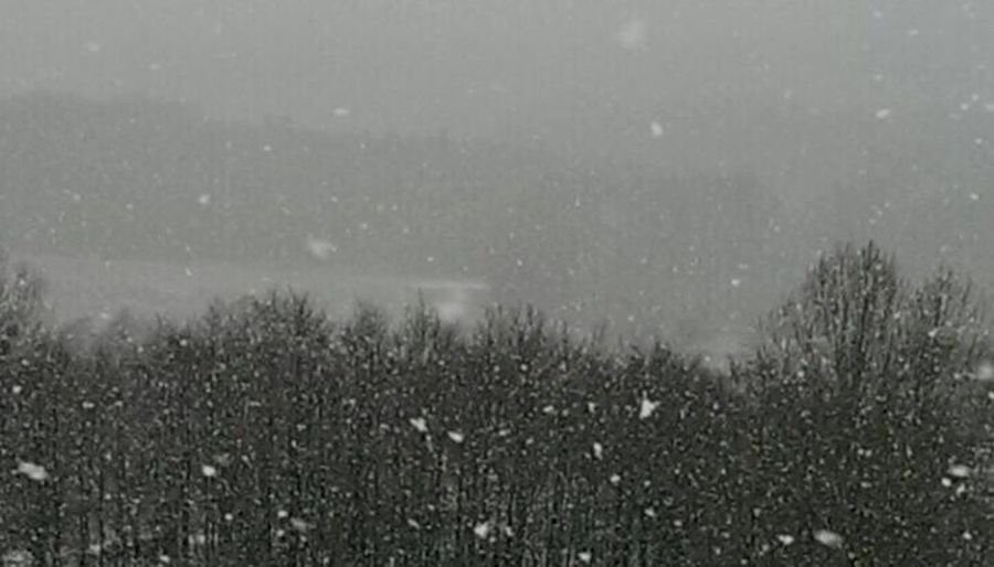 Snow Snowing Winter