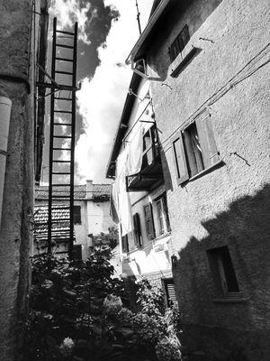 Photo by Simodenegri