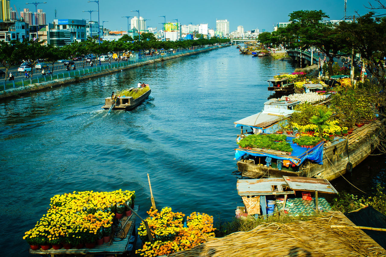 Ho Chi Minh City, Vietnam - Feb 04, 2016: Binh Dong flower floating market along Tau Hu Canal (District 8). Tet Holiday or Vietnamese New Year is the most important celebration in Vietnamese culture. Binh Dong Market Boat Chrysanthemum Chrysanthemums Cityscape Flower Market Harbor High Angle View Lunar New Year Market Nautical Vessel New Year New Year Around The World No People River Sai Gon River Saigon Saigon, Vietnam Tet Holiday Traditional Transportation Tree Vietnam Water Waterfront
