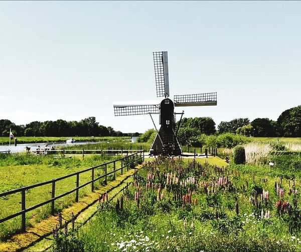 Nature Sky Protection Outdoors Nature Clear Sky Blue Landscape Scenics Tranquility Grass Laag Keppel Oude IJssel molen mill