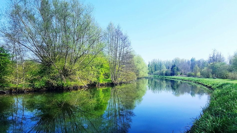 Water Reflection Lake Tree Nature Beauty In Nature Outdoors Day Tranquility Scenics Sky No People
