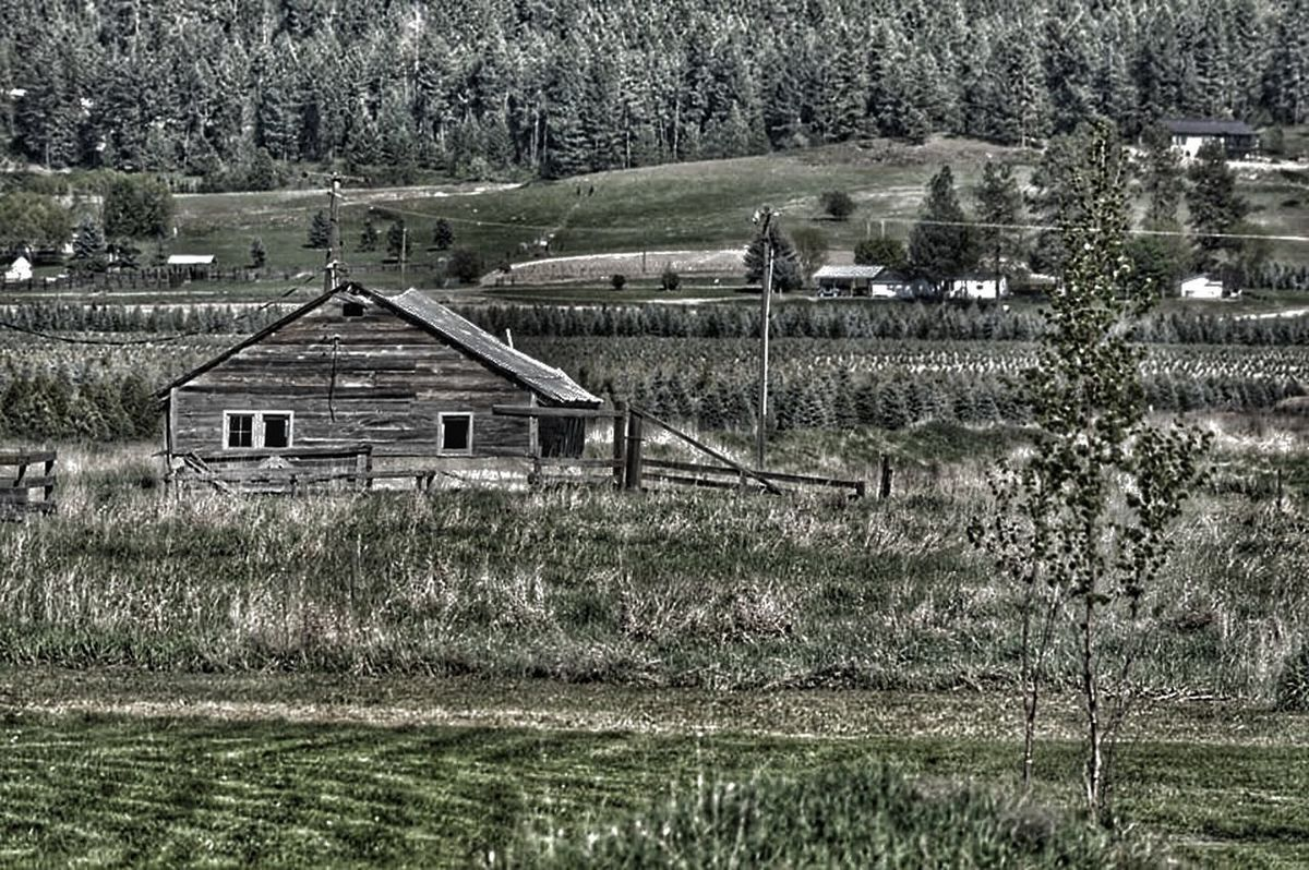 That Cabin ...in the woods. I'll be waiting for you there. Tag! Your it! No shortcuts! http://youtu.be/XtC8OKmrr5A Taking Photos Onmymind Love Stronger Than Ever Eye4photography  HDR Withyoualways Madlydeeplytruly Nevergivingup 831!!! 831