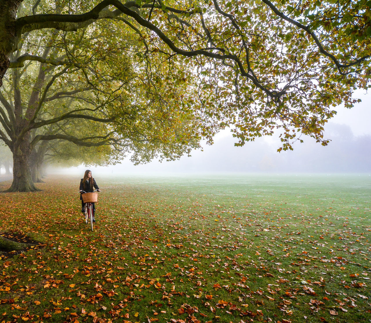 Foggy days turn Cambridge into a magical place... Beauty In Nature One Person Nature Tree Outdoors Cambridgeshire Cambridge Cycling Fall Leaves Landscape Autumn Bike Ride Autumn Leaves Foggy Morning Foggy Tree Fall Colors Transportation Foggy Landscape Autumn Colors Foggy Day Autumn Collection Bike Life Bike Riding Jesus Gre En