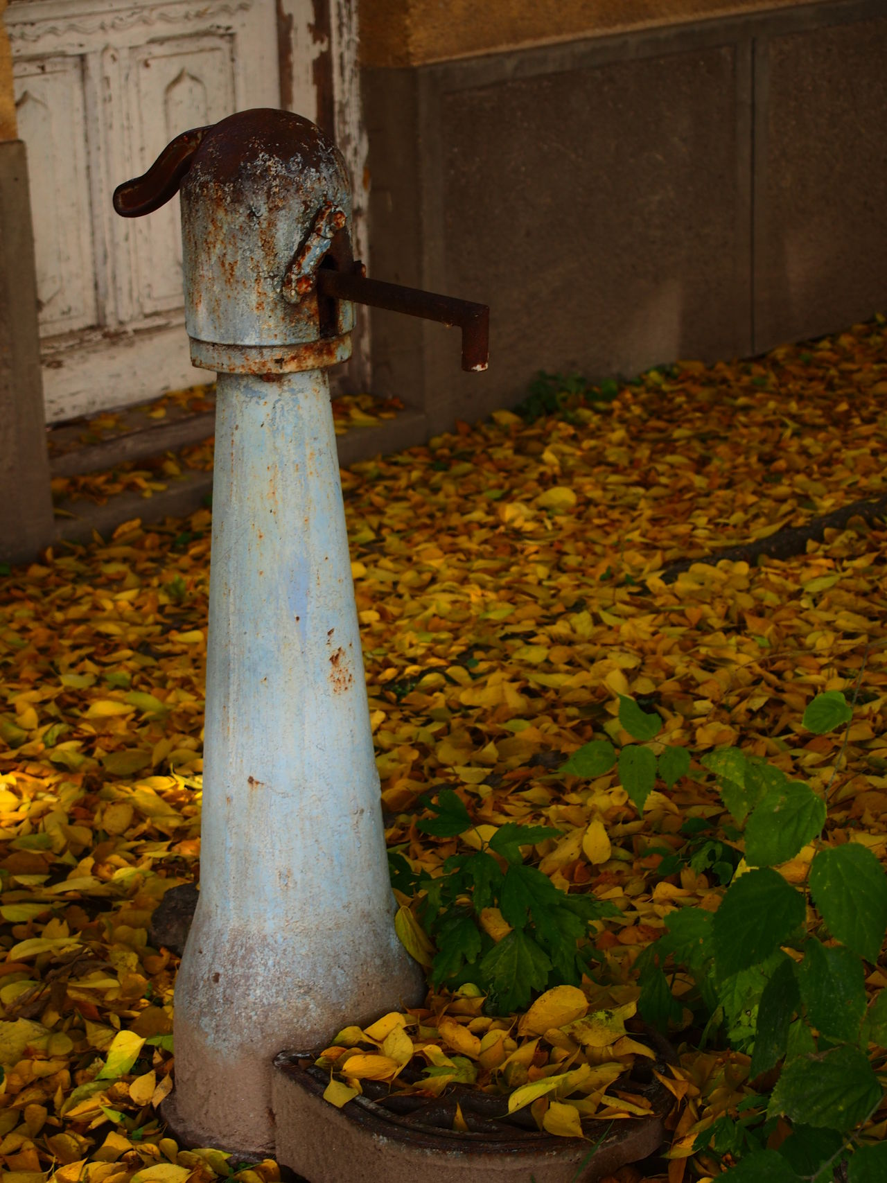 Autumn Autumn Day Fountain Leaf Madocsa Nature No People Outdoors Pit Pump Village Village Life Water
