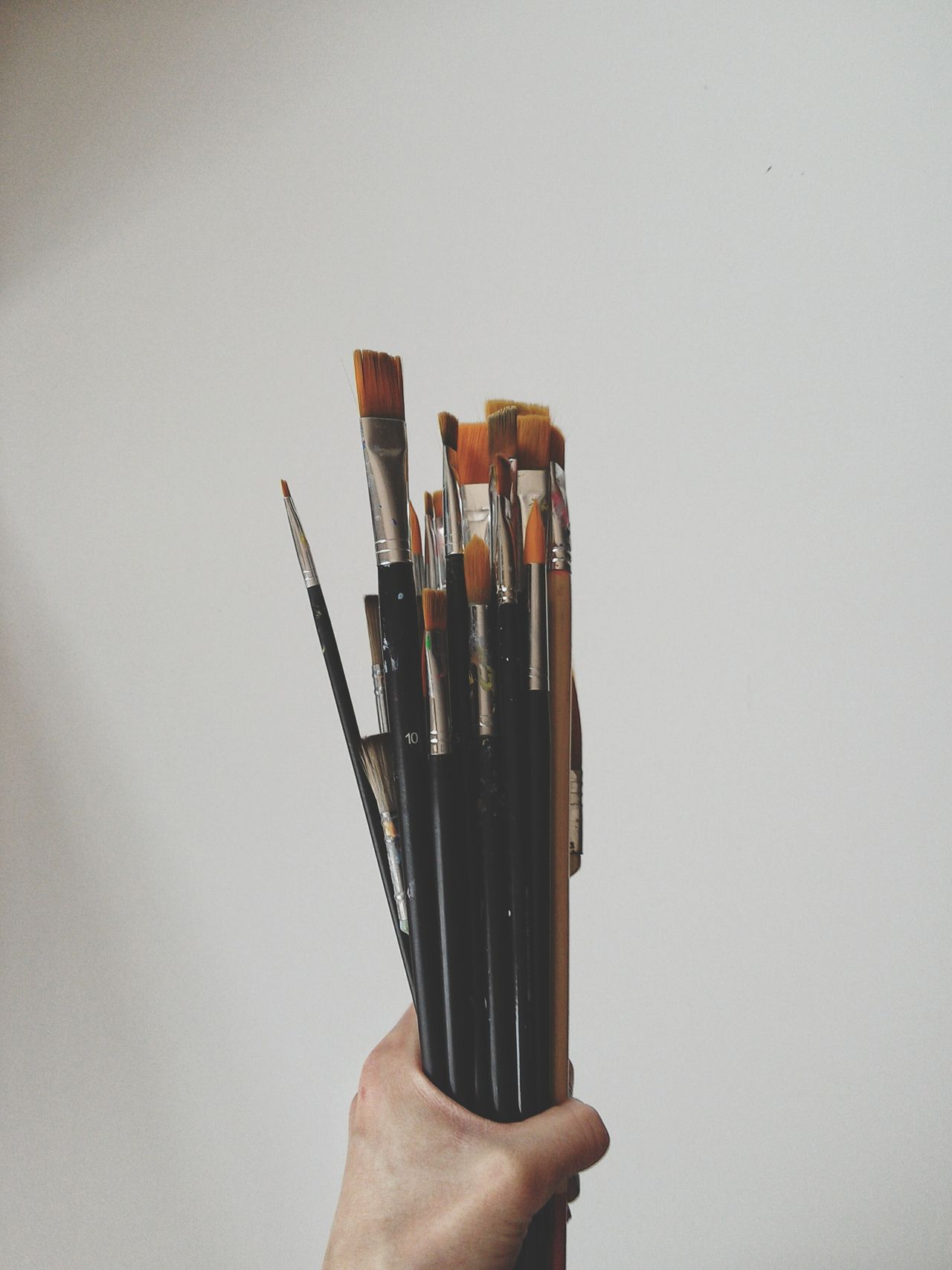 Human Hand Paintbrush Holding Large Group Of Objects Variety Hobby Painting Tools White Canvas White Background Studio Shot Paintbrushes Human Body Part One Person Woman Hand Fine Arts Indoors  Close-up