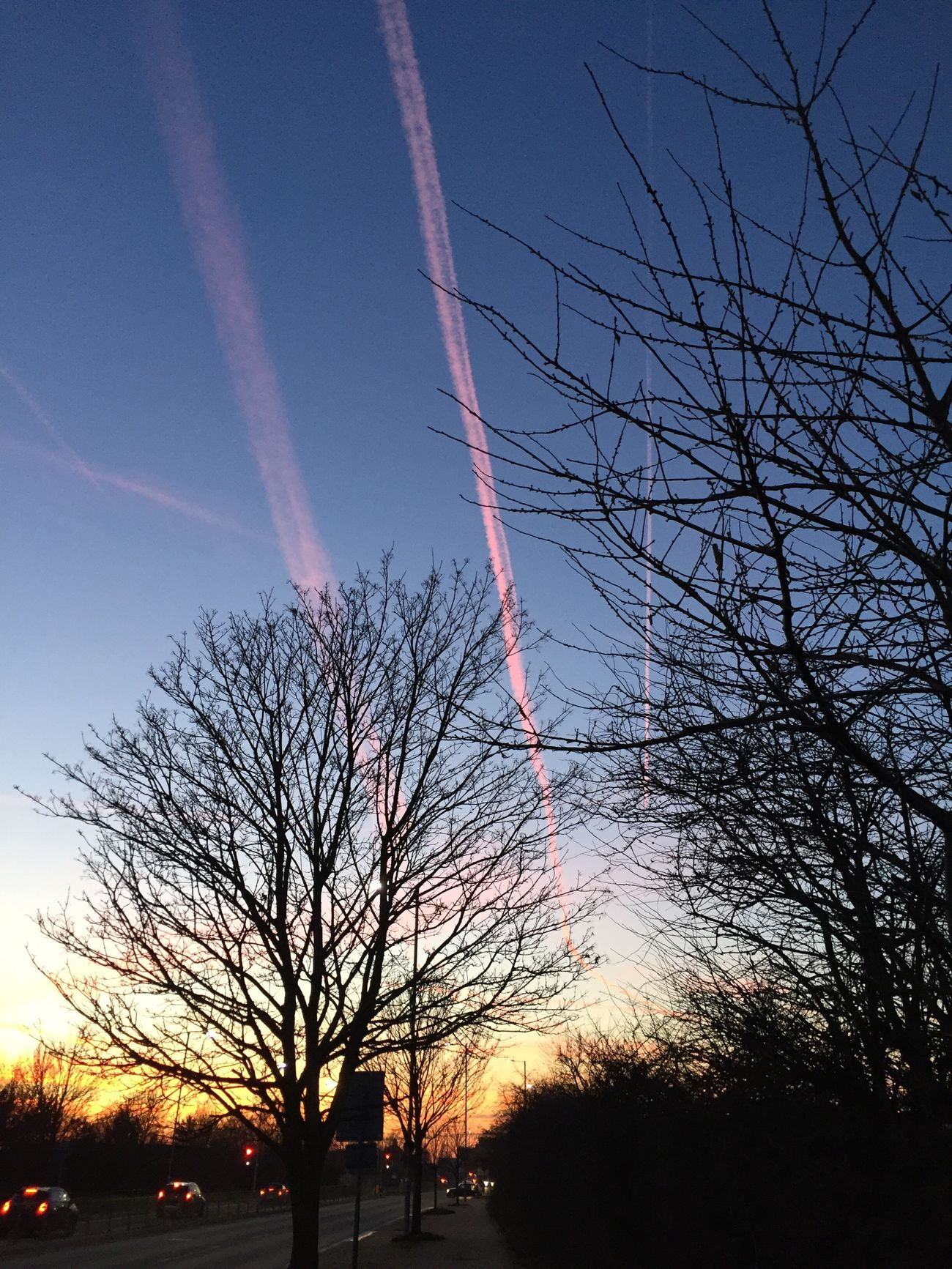 Dusk near an airport Sky Nature Sunset Bare Tree Beauty In Nature Tree Scenics Silhouette Low Angle View Outdoors No People Tranquility Tranquil Scene Growth Branch Cloud - Sky Vapor Trail Day