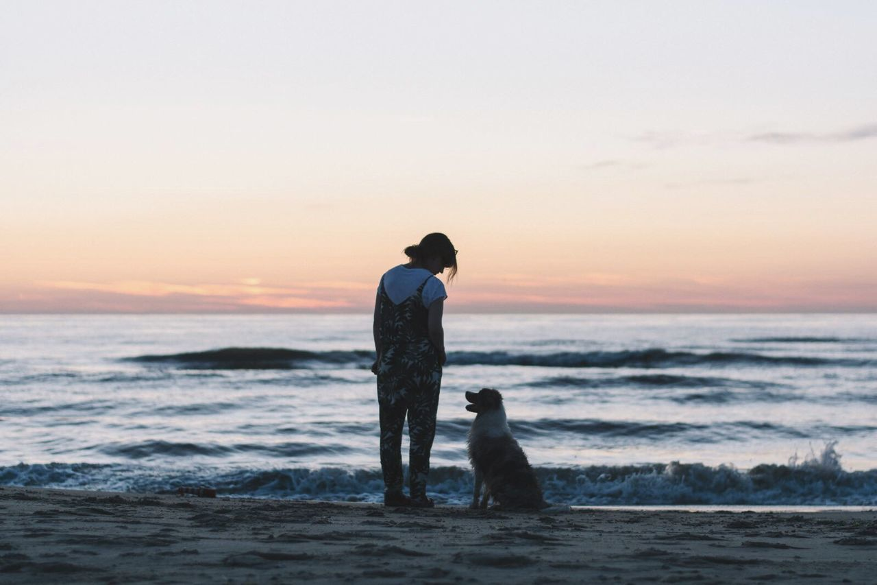 Beautiful stock photos of hunde, sea, beach, togetherness, horizon over water