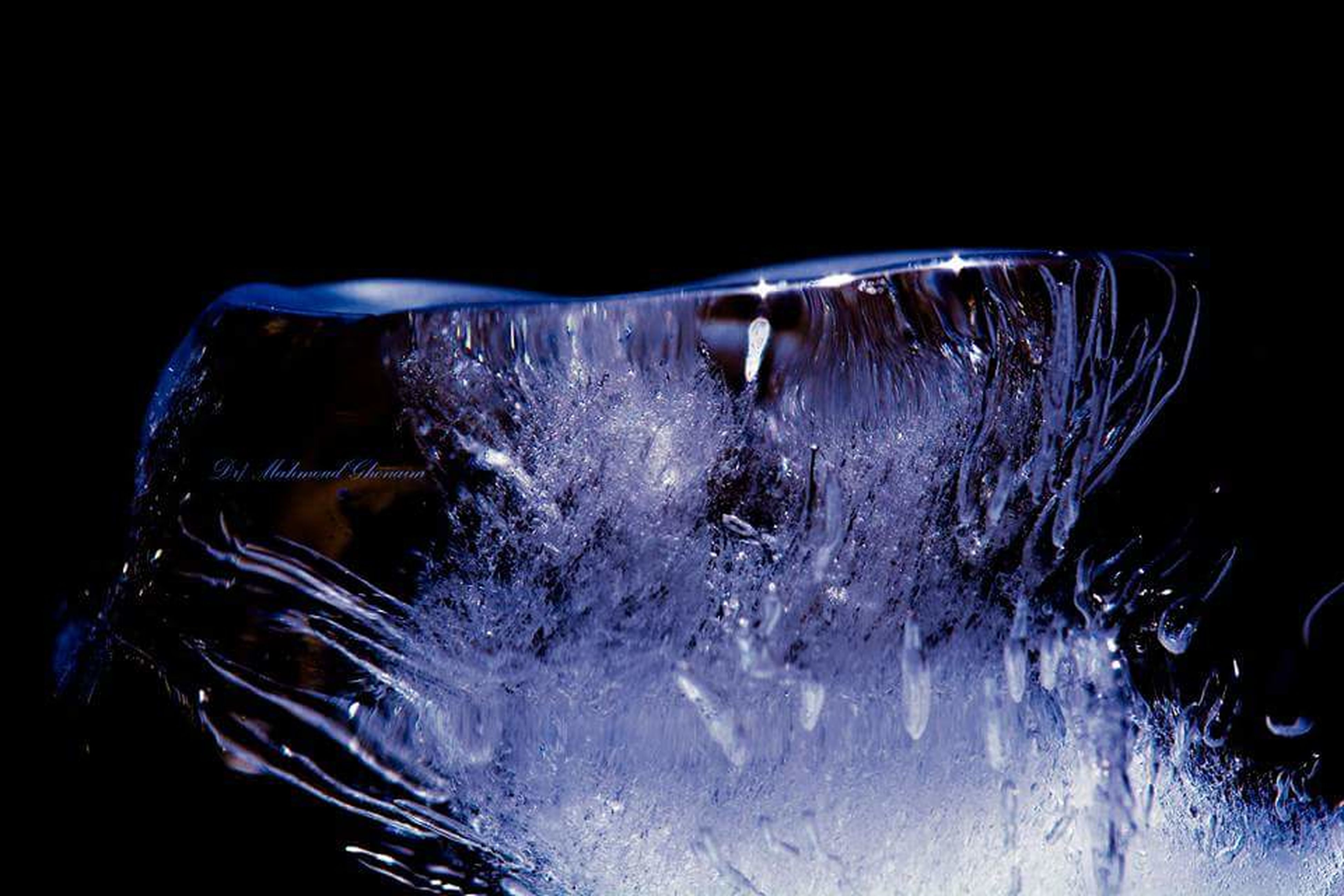 black background, close-up, studio shot, no people, motion, water, freshness, outdoors, day