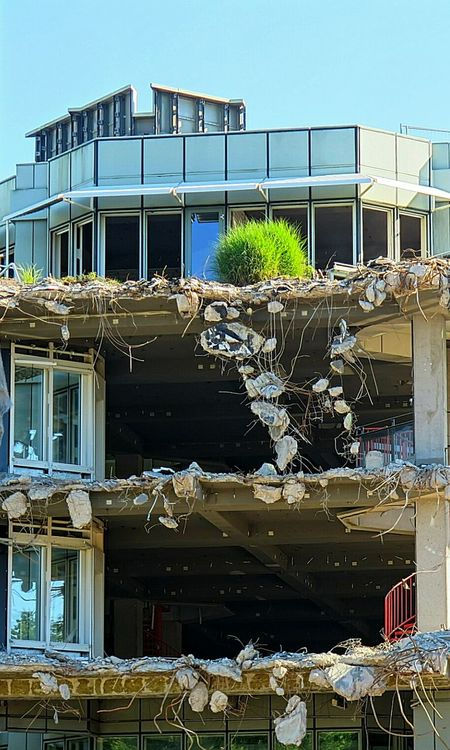 Urbanphotography Discover Your City WreckingBall Wrecked Damaged And Wrecked Destruction Destroyed Ruins Houseplants Ladyphotographerofthemonth