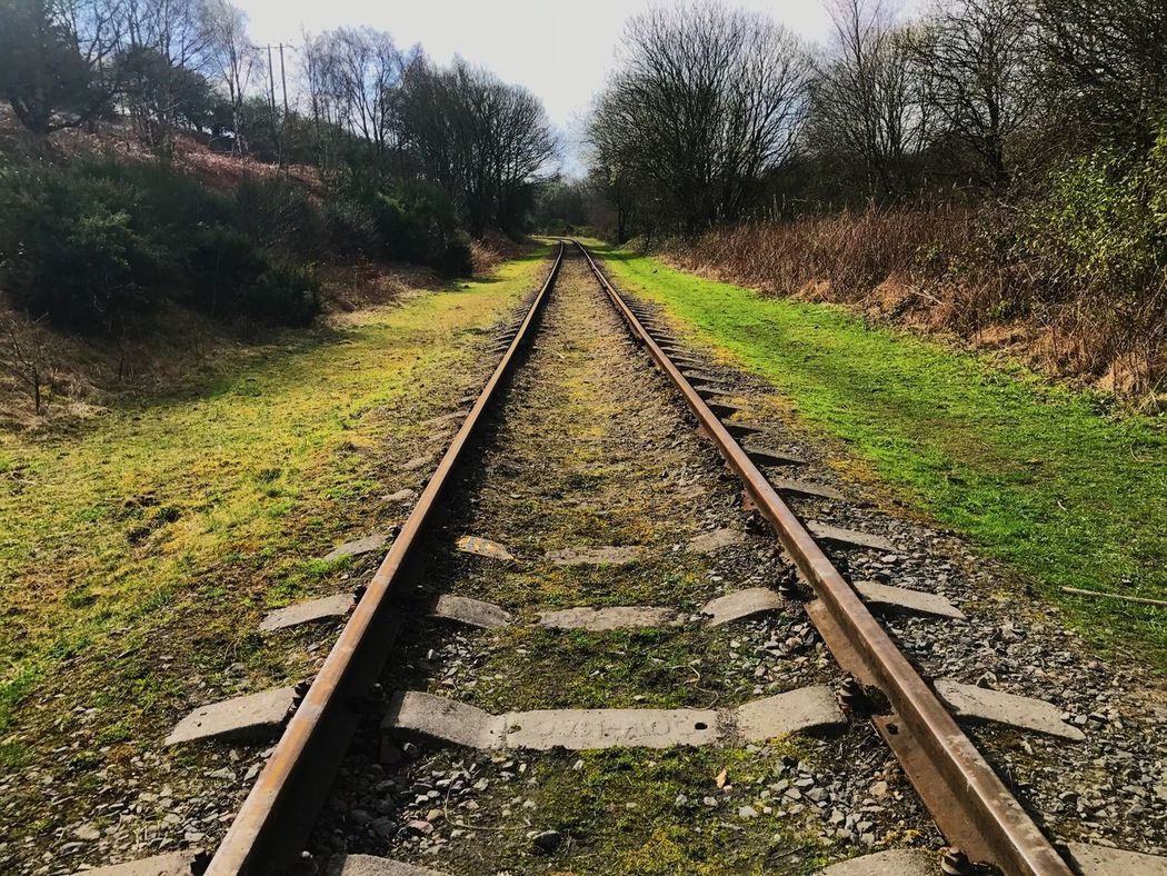 Railroad Track Rail Transportation Transportation Tree Nature No People The Way Forward Railroad Day Beauty In Nature Outdoors Scenics Landscape Railway Track Sky Rural Tanfield Railway