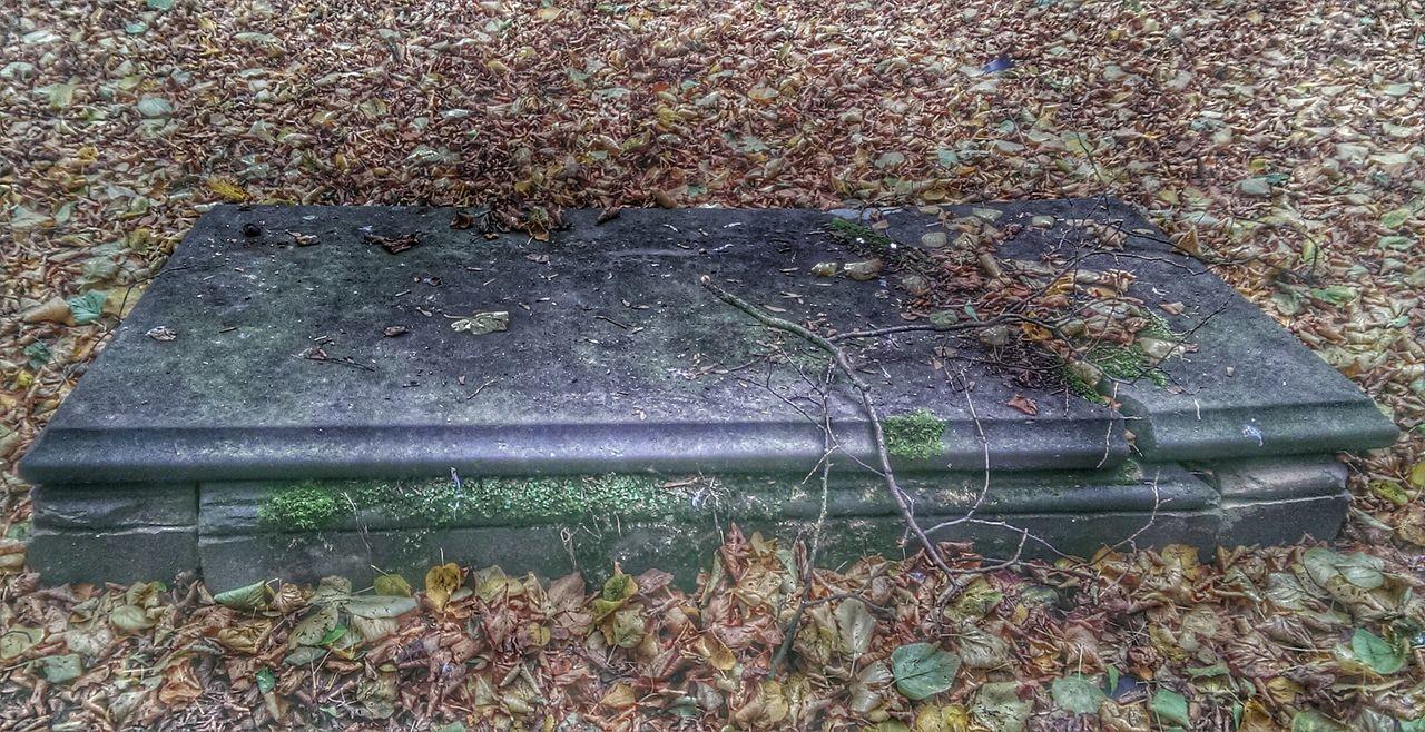 Graveyard Beauty Graveyard broken grave stone.. Haloween Winter