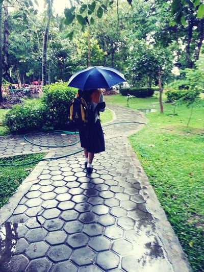 Tree Umbrella Walking Footpath Day Park Outdoors Frinds Gril