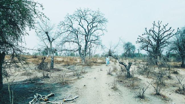 Landscape_captures Color Chrome World Countryside Landscape Nature Photography Subsahara Nigeria