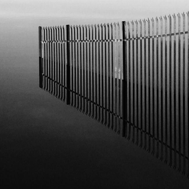 Black & White Blackandwhite Black And White Monochrome Reflection Water Symmetry
