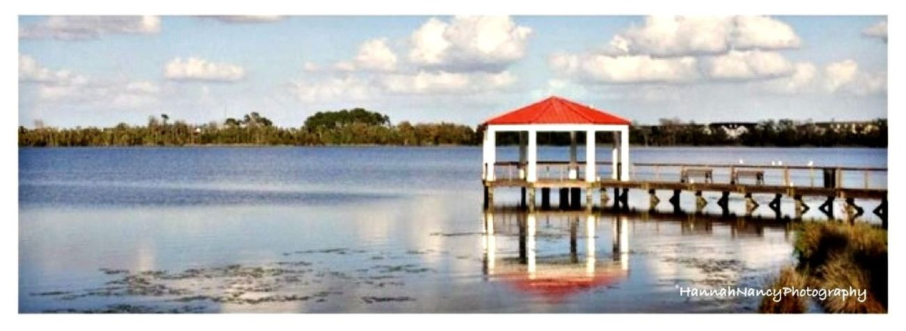 One of our many lakes in Florida. Eye4photography  EyeEm Best Edits HannahNancyPhotography
