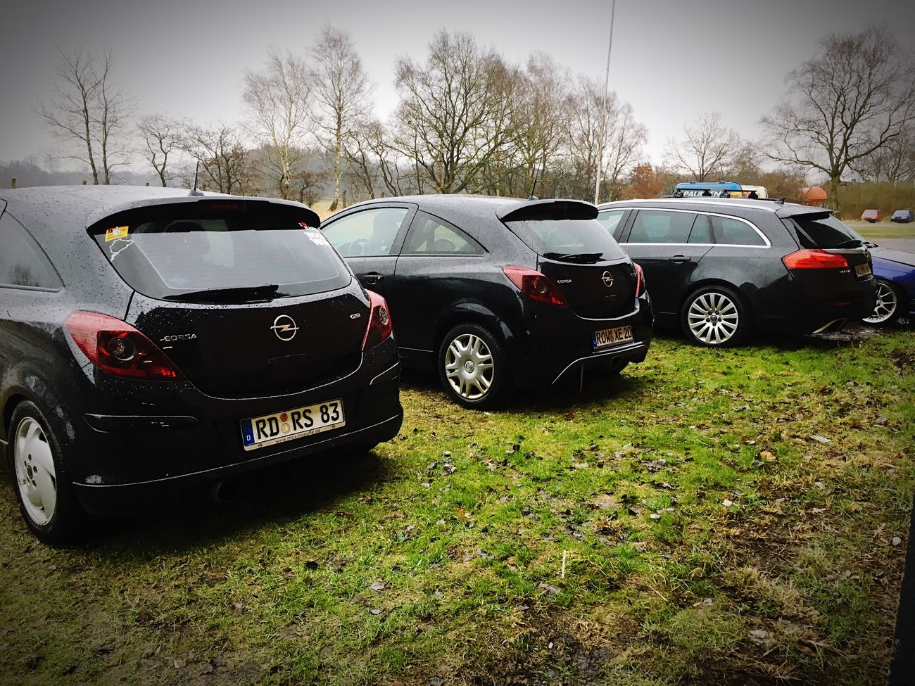Car Tree Transportation Mode Of Transport Stationary No People Day Outdoors Corsa D GSI Corsa Insignia Opel OPC