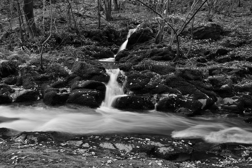 Devon EyeEm Best Shots EyeEm Nature Lover Flowing Water Nature Tranquility Watersmeet Beauty In Nature Blackandwhite Day Forest Idyllic Landscape Long Exposure Monochrome Motion Nature_collection No People Non-urban Scene Outdoors Power In Nature River Scenics Tranquil Scene Water