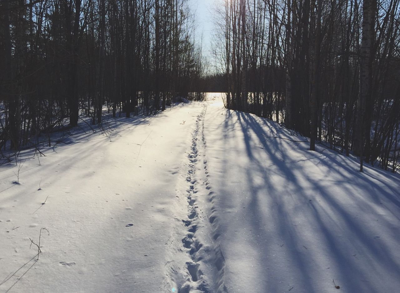 Footprints On Snowy Forest Road