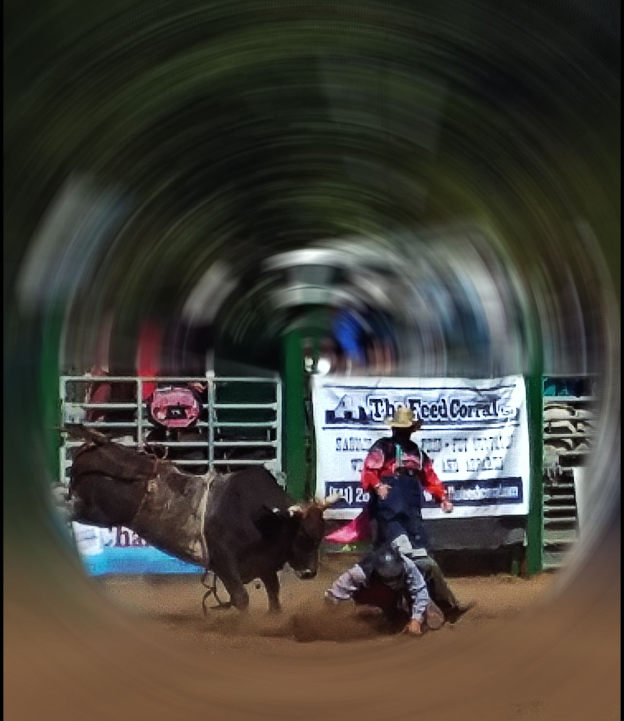 Day at the rodeo... Just tossed! Newport Oregon Lincoln County Fair Rodeo ❤ AndroidPhotography ToolWiz Photos Photo Editor Photo Wonder My Photo Album ♡ My Artwork 🌹