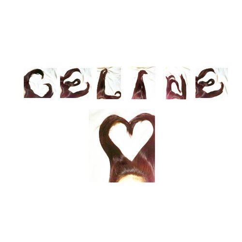 Celinedion Love