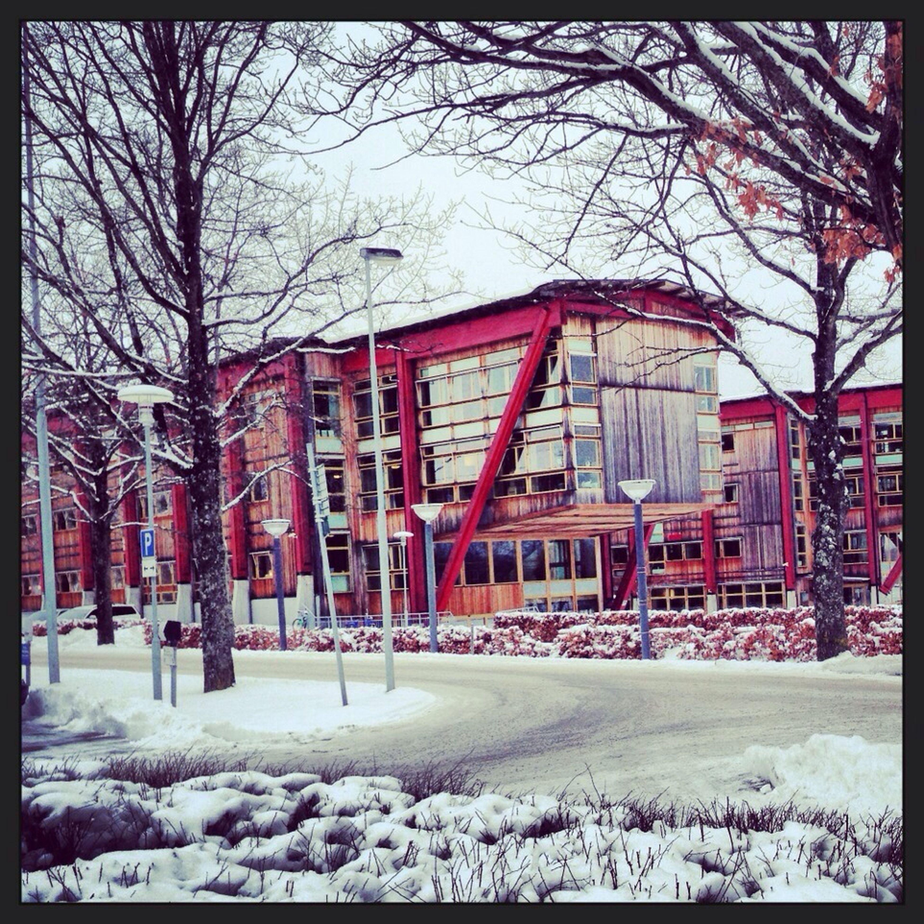 Linnéuniversitetet Sweden s Växjö  Snow