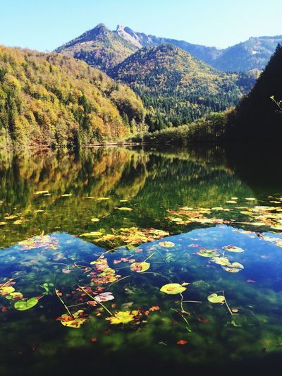 The EyeEm Facebook Cover Challenge Water Reflections Nature Nature_collection