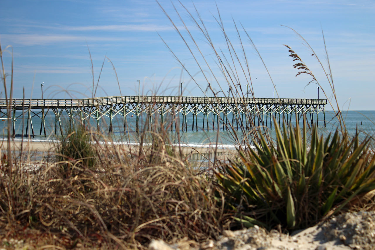Fishing Pier Beauty In Nature Day Grass Horizon Over Water Landscape Nature No People Outdoors Sea Sky Tranquility Water