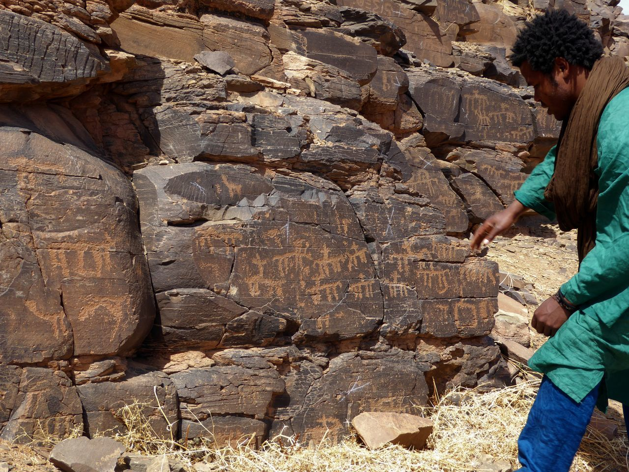 Trust the local guide Animals In The Wild Desert Landscape Historical Monuments Leading The Save Way Local Landmark Mountain Range Neolithic Neolithic Art One Person Riverside Riverside Photography Rocky Roads Touareg Tour Guide Tourism Tourist Attraction  Volcanic Landscape What Who Where Zagora