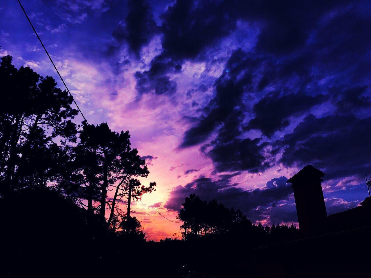 Sunset Tree Sky Relaxing Enjoying Life Cloud - Sky