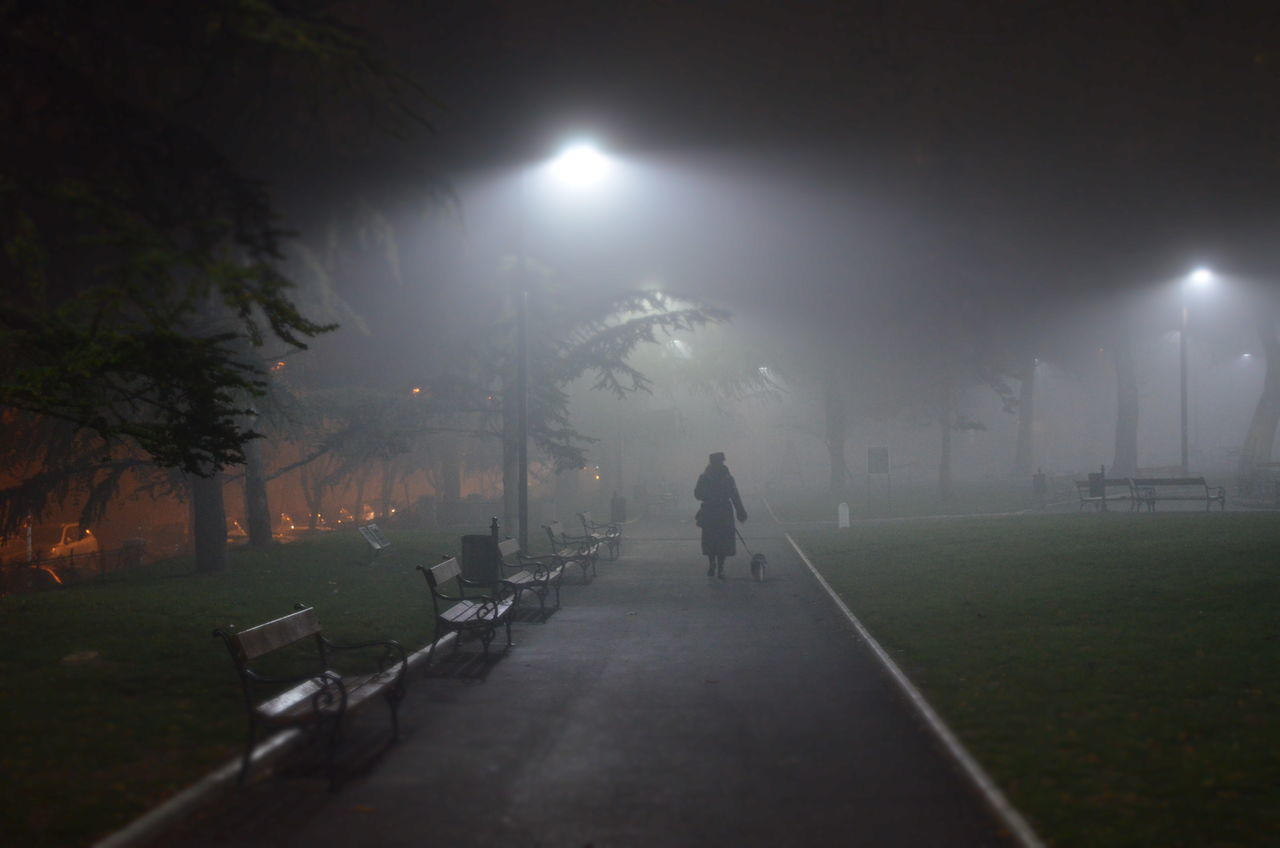 Belgradestreets Beograd Foggy Night Night Spooky Street Light Woman With A Dog First Eyeem Photo Telling Stories Differently My Favorite Photo Cities At Night People And Places