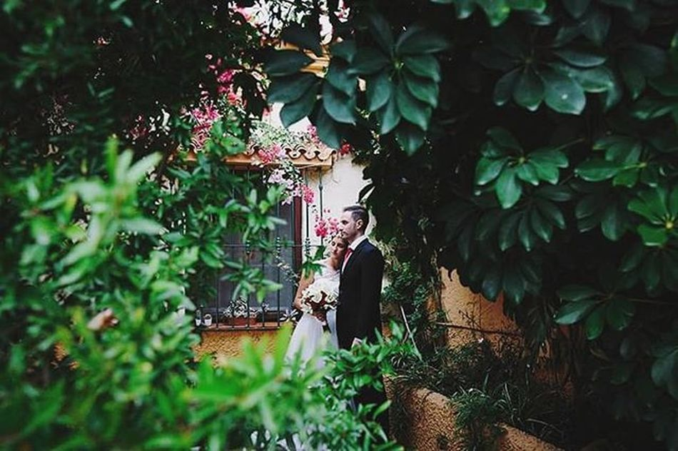 Elena y Jesús Boda Fotografiadebodas Paypay Chilches Malaga Verde Reciencasados Lookslikefilm Justmarried Love Wed Wedaward Simetria 3hvisual Fotografodebodas Fearless Bodamas Zankyou Bodasnet @bodasnet @bodamas @zankyou_bodas Weddingphotospain