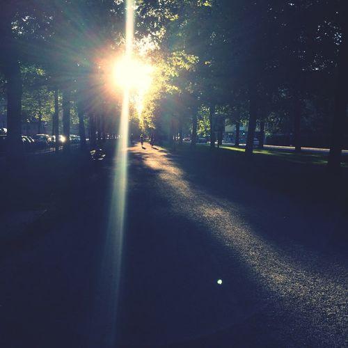 Hello World Quiet Street Sun Light