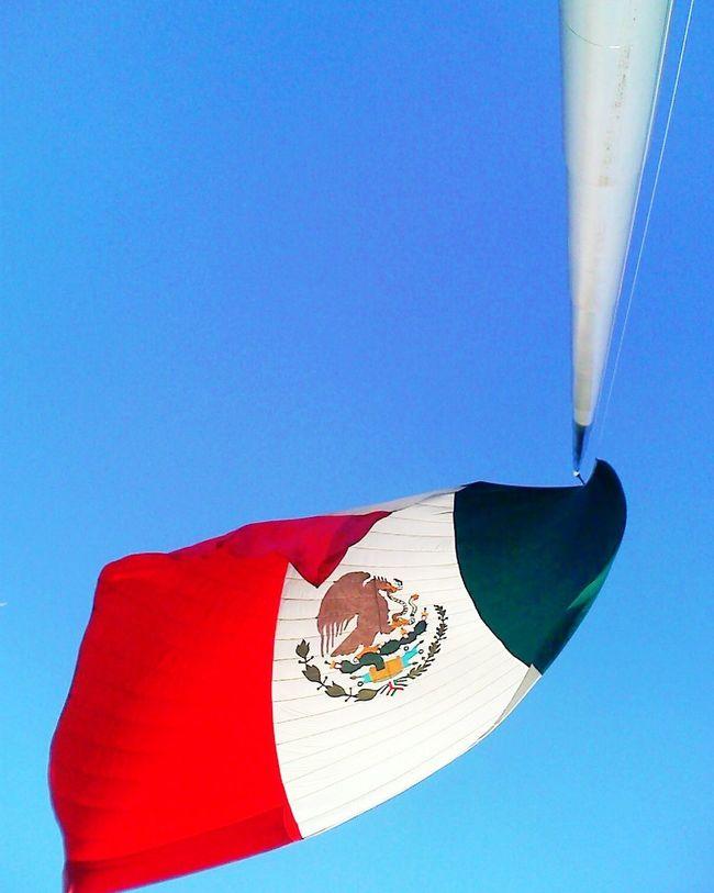 My flag Sky Photooftheday Eye4photography  Eye4photography  EyeEm Best Shots Mexico_maravilloso Ciudaddemexico Urban Scene Cdmx Flag City Life