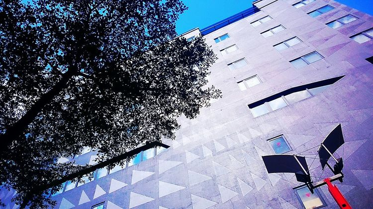 Sky_collection EyeEm Best Shots Building Trees