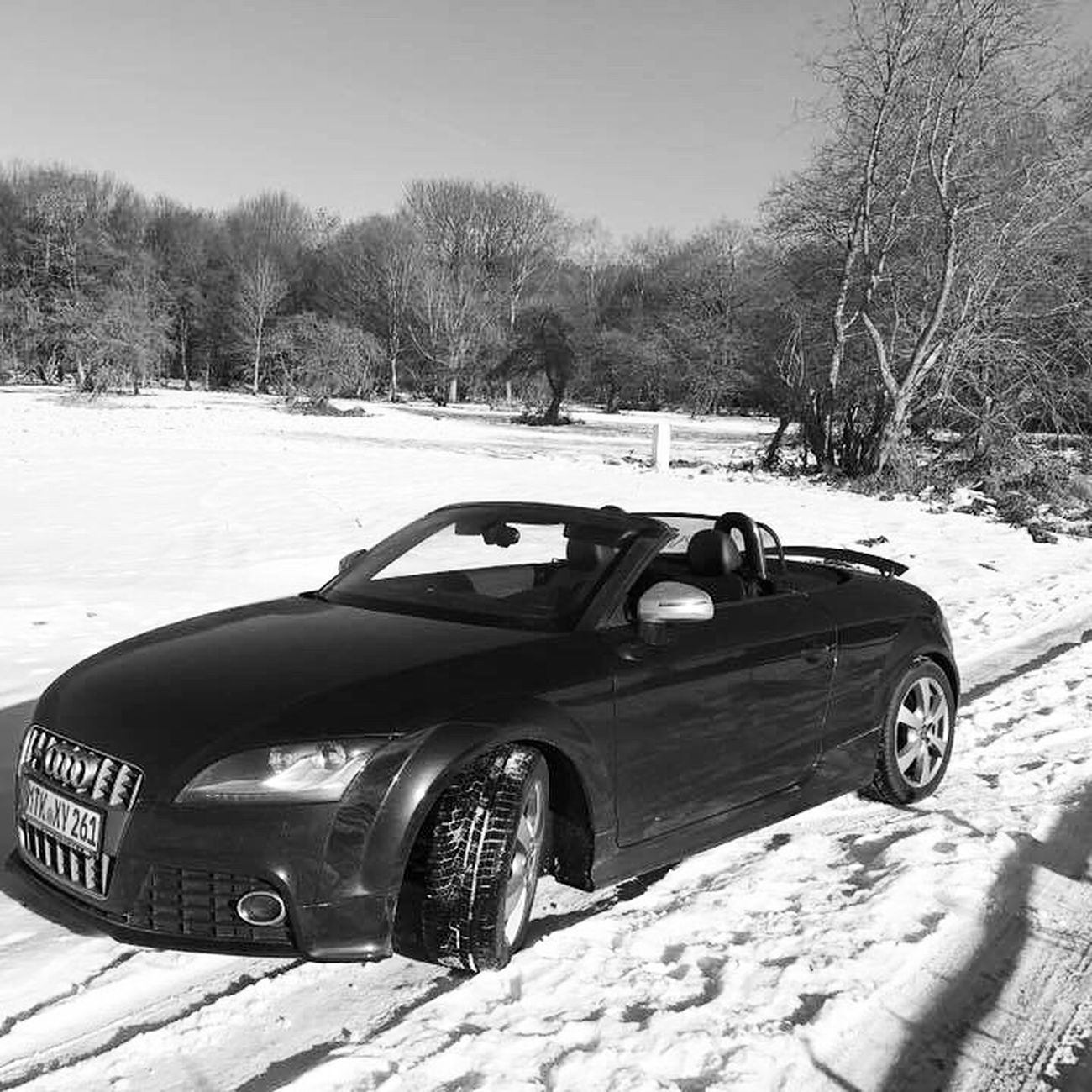 Fun in the snow Snow Schloßborn AudiTTS Audi
