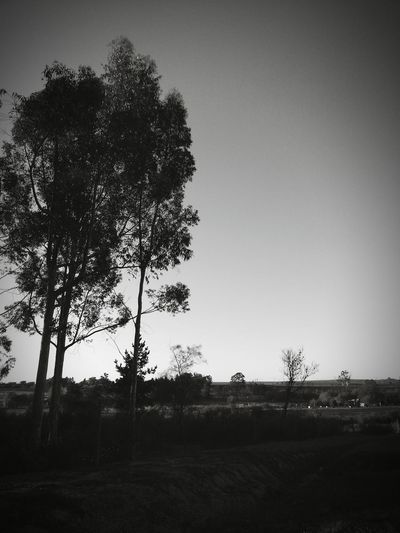 Sunset Sleeping In My Car Hope Relaxing Outdoors Peaceful Nature Lover Pulled Over To Rest Long Drive Ahead Goodnight Good Night Tranquility Blackandwhite Black And White