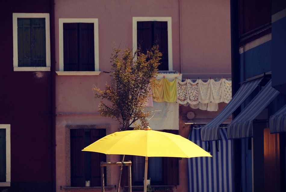 Architecture Building Exterior Built Structure Burano, Italy City Day Outdoors Tree Unbrella Venice, Italy Window Yellow EyeEmNewHere Sun