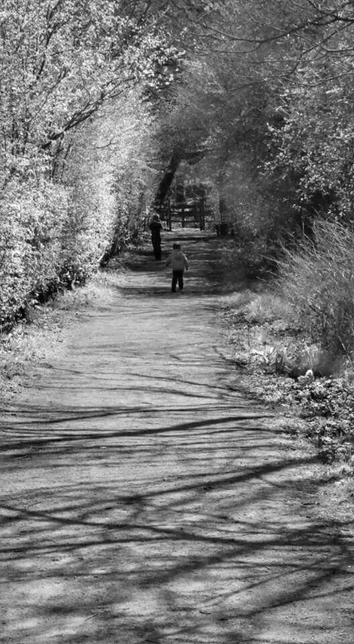 Black&white Black And White Boys Running Path Light And Shadow Trees Gate