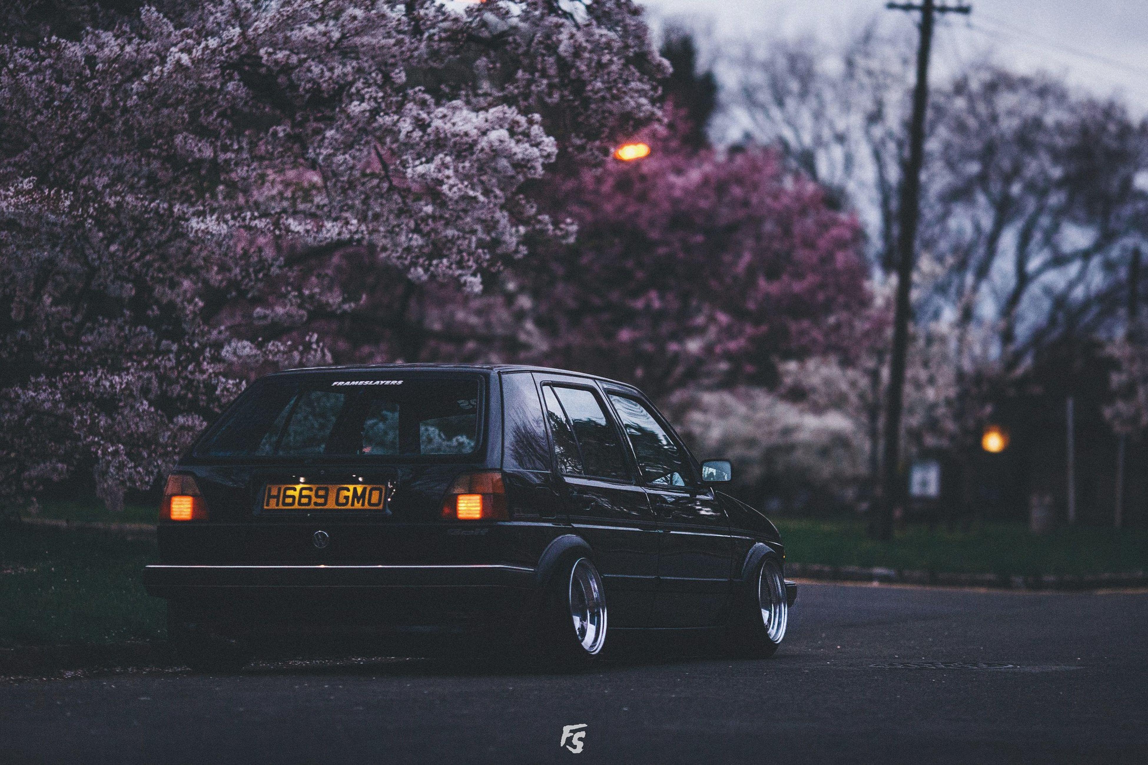car, tree, transportation, land vehicle, outdoors, flower, no people, illuminated, nature, sky, day