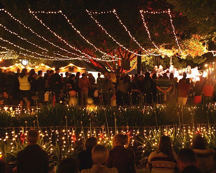 Christmas carols by fairy light Fairy Lights Community