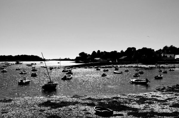 Scanaki Golfedumorbihan Golfe Du Morbihan Bretagne Silhouette Enjoying The View Blackandwhite Checkthisout Placetovisit France Nautical Vessel Beach Water Sea Silhouette Summer Outdoors Nature Tranquility Sky No People Day Beauty In Nature Scenics Horizon Over Water Perspectives On Nature Rethink Things Black And White Friday