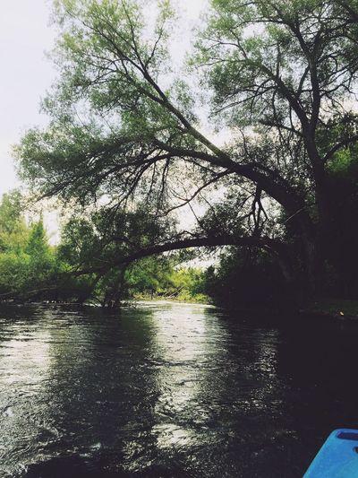 Kayaking/ 8.16.15 Kayaking Water
