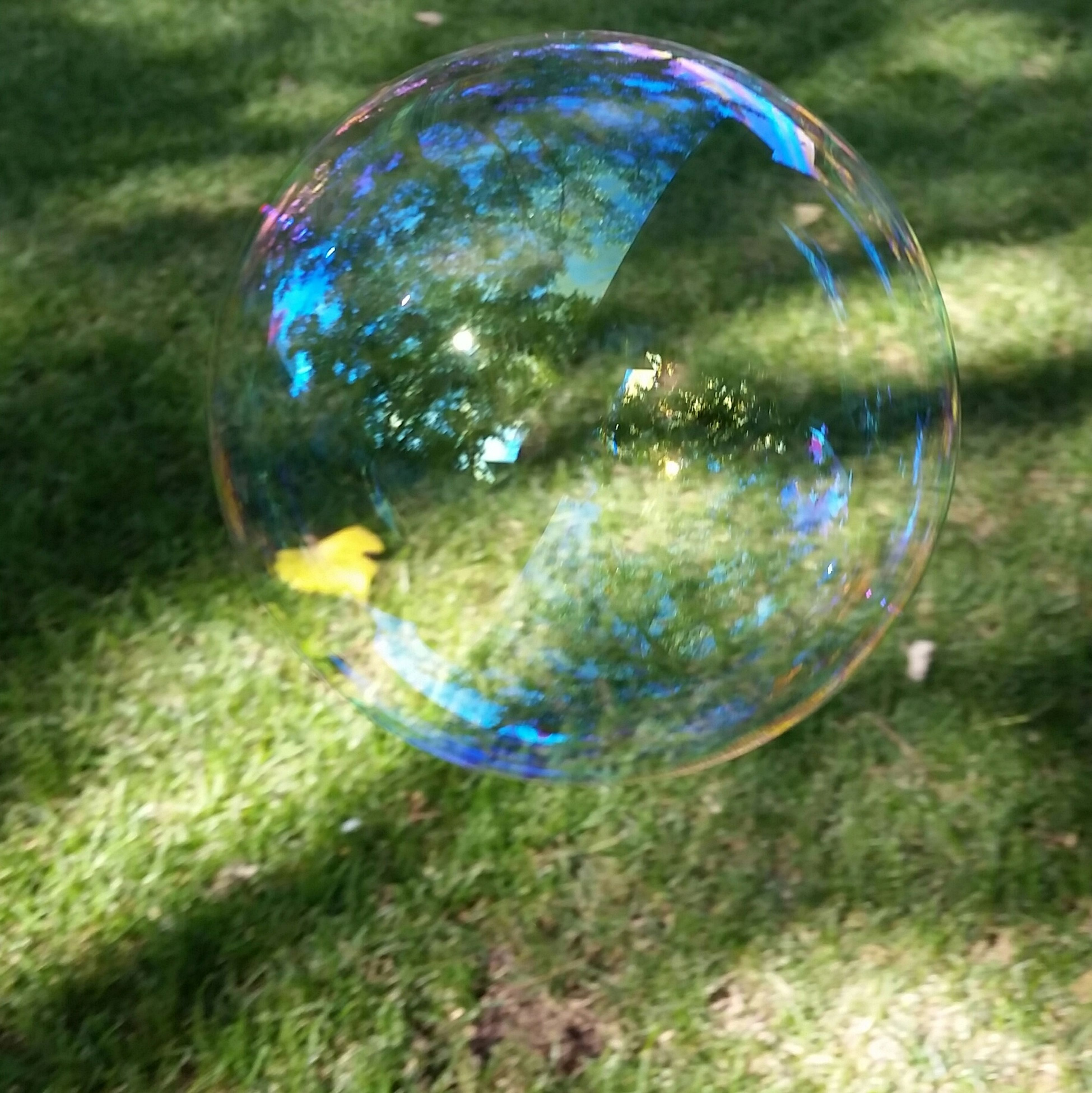 bubble, close-up, sphere, focus on foreground, green color, grass, nature, blue, multi colored, day, beauty in nature, no people, fragility, outdoors, selective focus