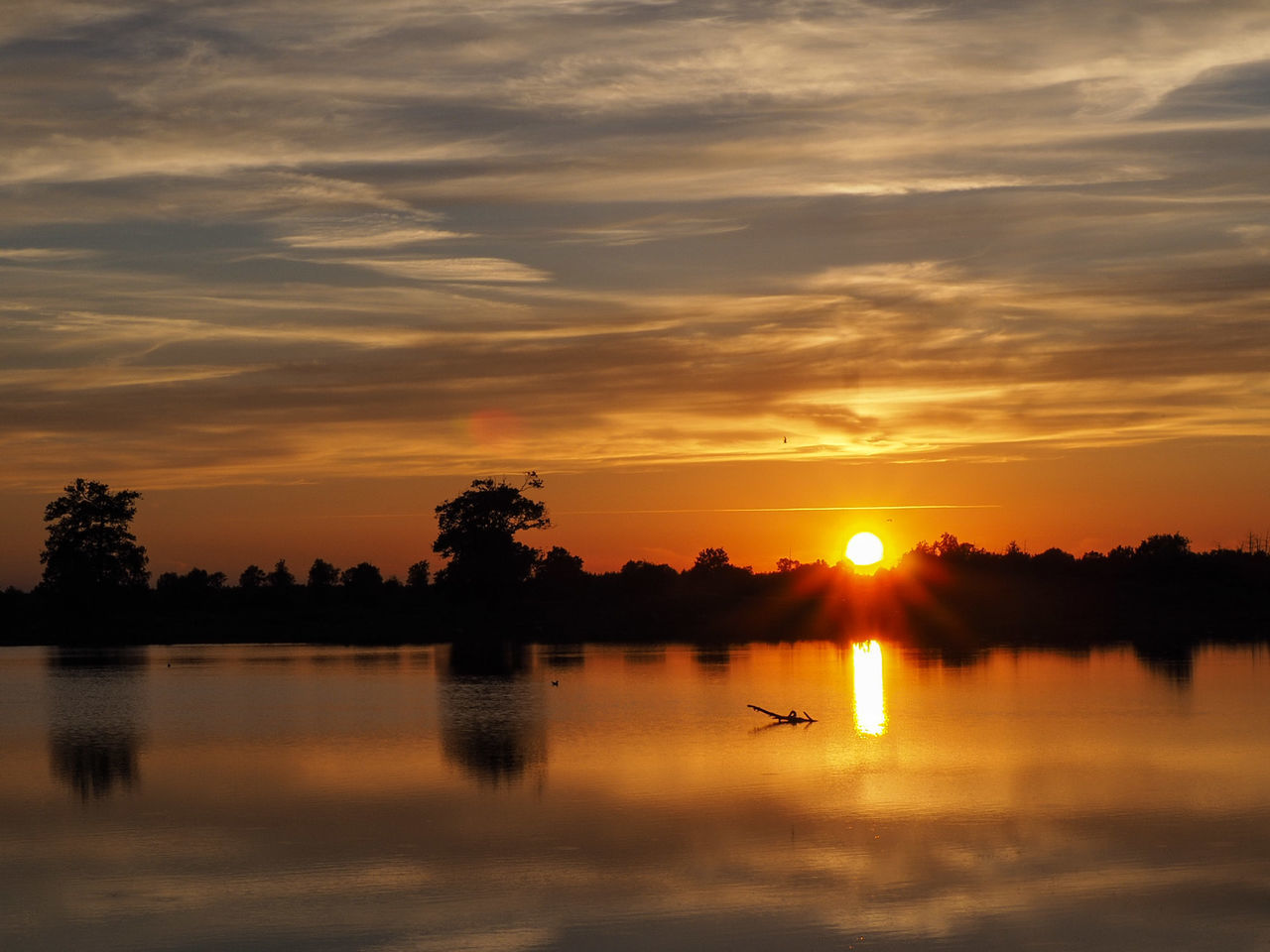 sunset, water, silhouette, beauty in nature, sky, tree, nature, orange color, scenics, tranquil scene, reflection, cloud - sky, tranquility, lake, sun, waterfront, no people, outdoors, nautical vessel, bird, swan, day