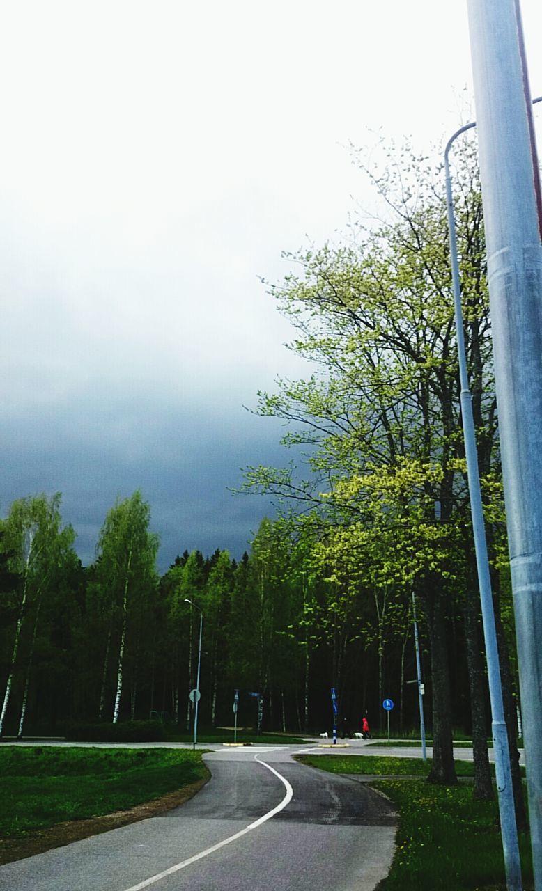 Road Under Overcast Sky