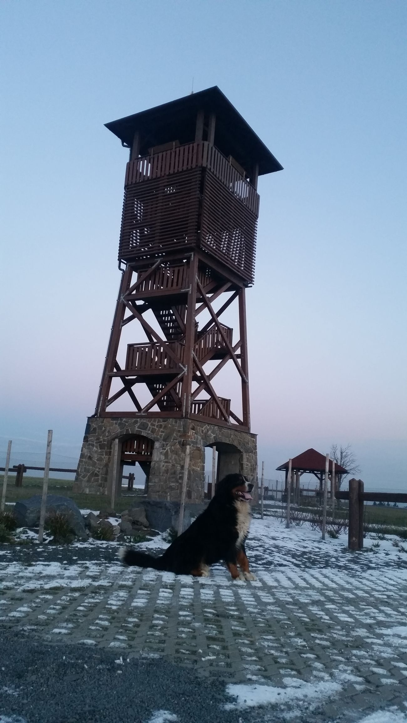 Watchtower My Dog My Love Walk Winter Cold Best  Amazing Place Love It Photography Taking Photos Check This Out Hanging Out Hello World Czech